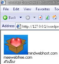 default display on internet explorer
